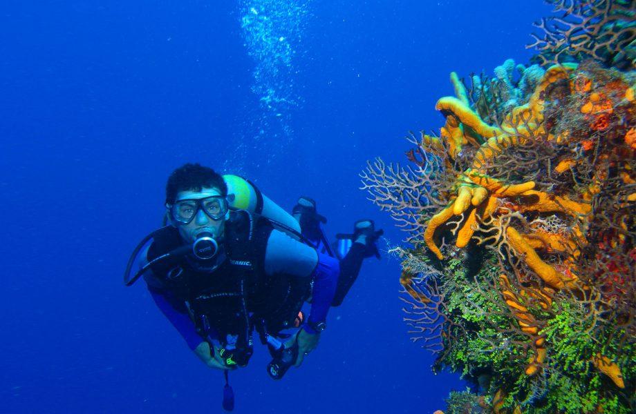 Diving at Layang Layang island