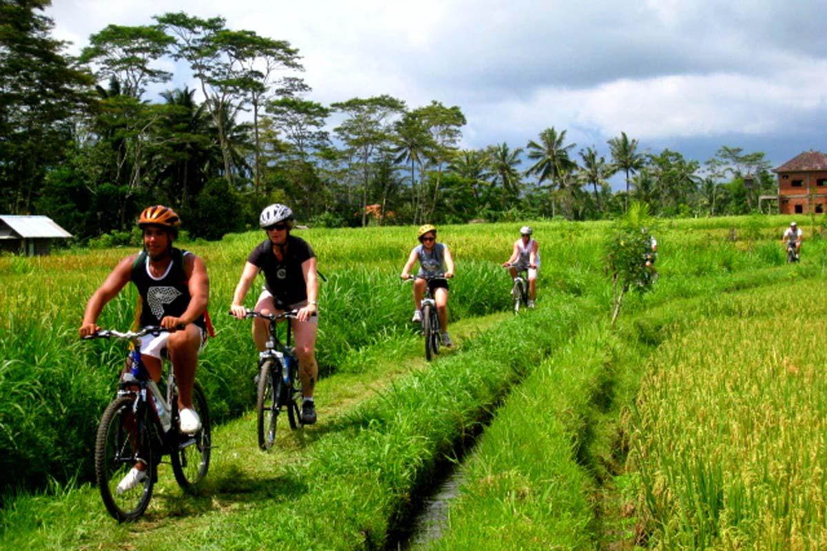 Ubud cycling tour