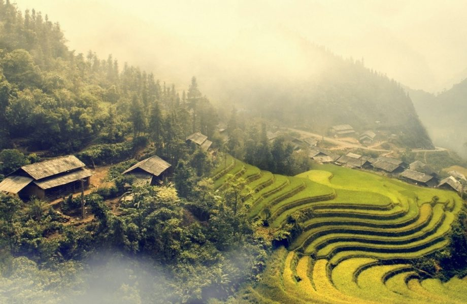 Vietnam's landscape