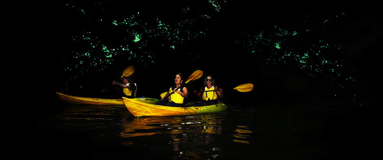 New Zealand glow worm caves