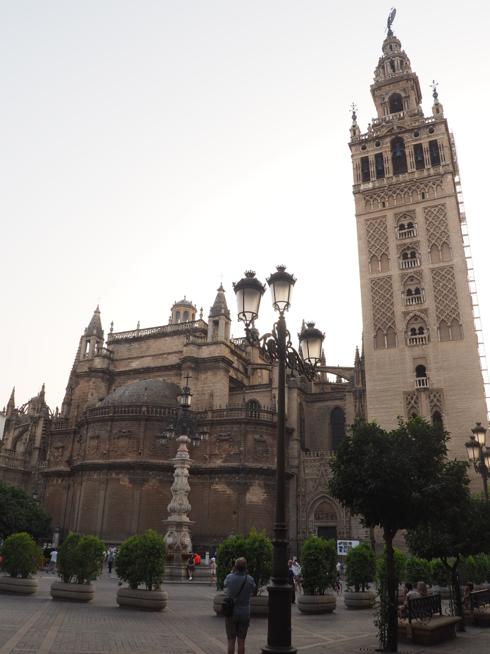 Seville catherdral and bell tower