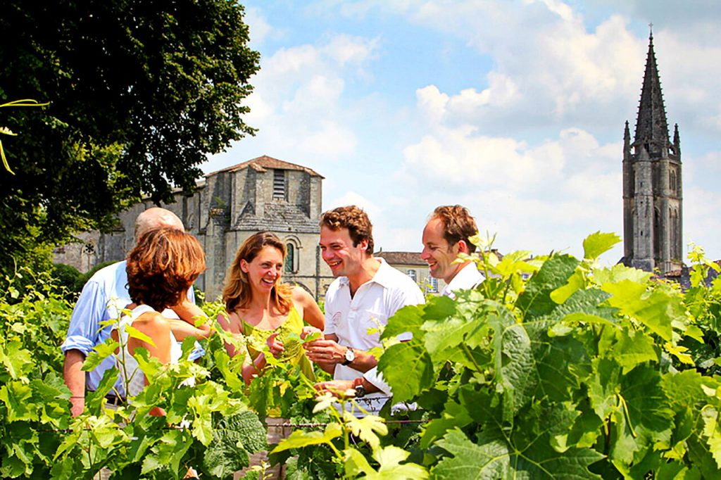 things to do in Bordeaux, Bordovino wine tour