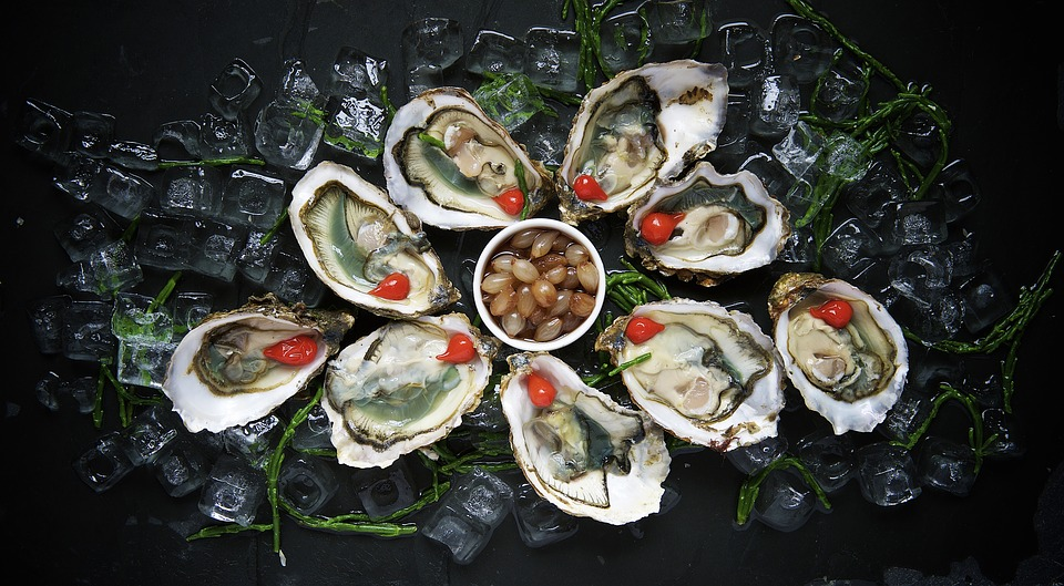 oysters,Australia travel