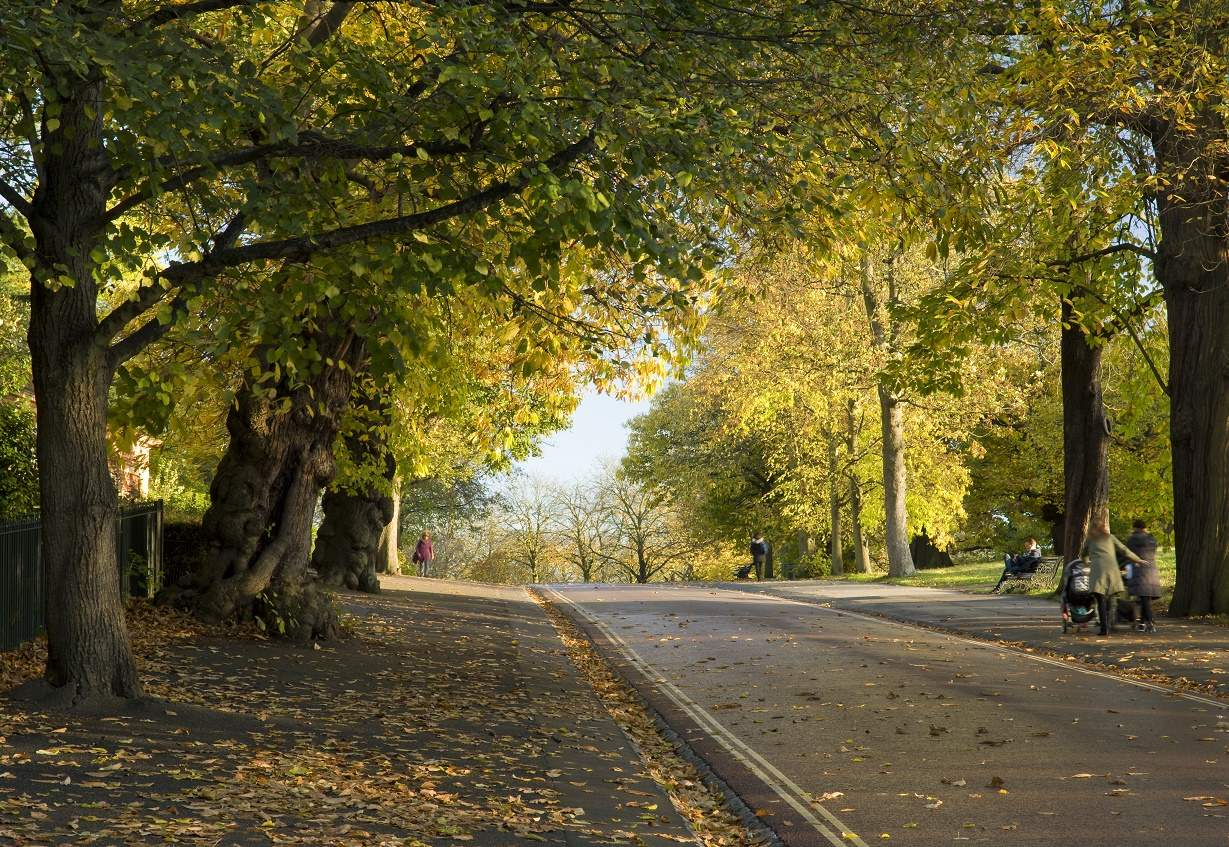 Greenwich Park,Top free things to do in the UK