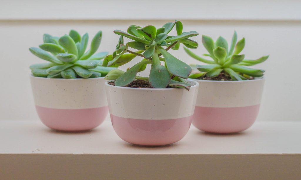 budapest ceramic item
