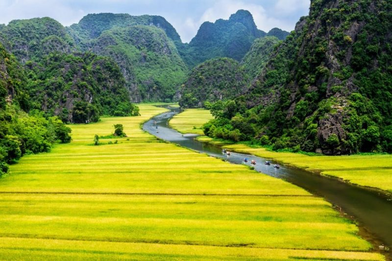 unique things to do in ninh binh